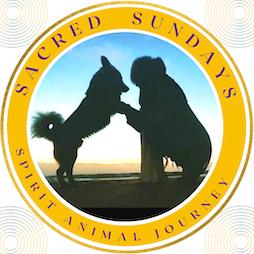 Spirit Animal Journey  Tickets | The Inner Guru Liverpool  | Sun 18th April 2021 Lineup